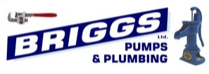 Logo-Briggs Pumps and Plumbing