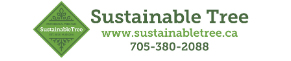 Logo-Sustainable Tree