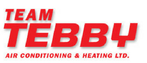 Logo-Team Tebby